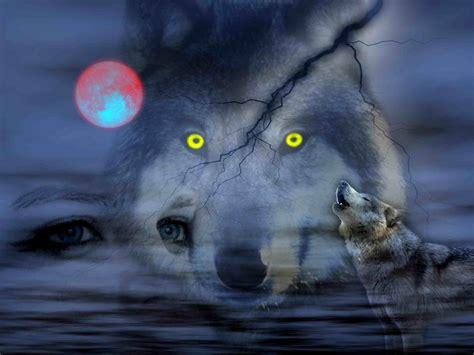 imagenes hd lobos noche de los lobos fondo de escritorio hd widescreen