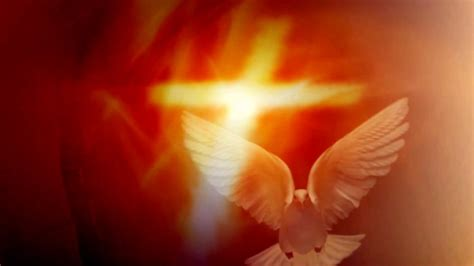 video background holy spirit   form  dove p full hd youtube