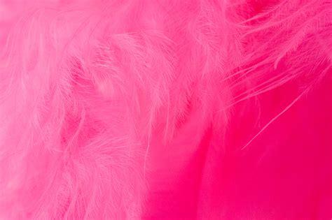 Complementary Of Pink | tons de rosa tons de rosas