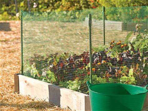 keeping pests out of vegetable garden garden fencing animal fencing garden fence gardener s