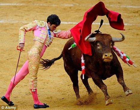 spanish region expected to ban bullfighting in vote