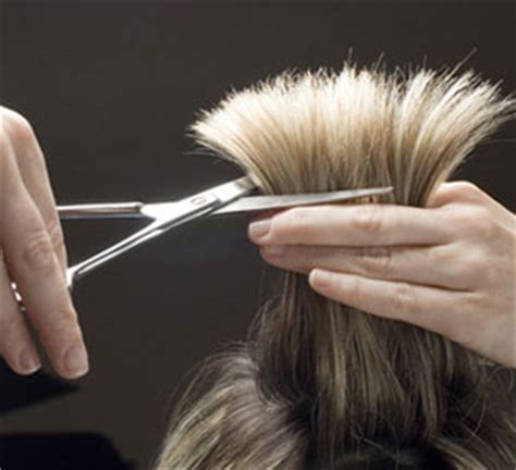 hair cuting techniques free hair cut design hair cutting techniques