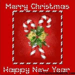 lil fizz hallmark free ecards free ecards 123 greetings