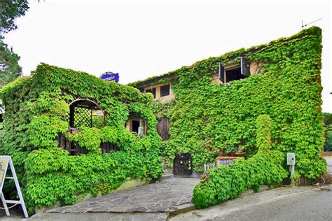 lacona appartamenti appartamento lacona in cing all isola d elba cing