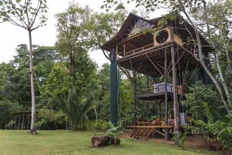 tree houses best treehouses amazing tree house vacations