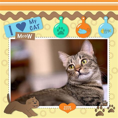 scrapbook layout cat 17 best images about nature scrapbook layouts on pinterest