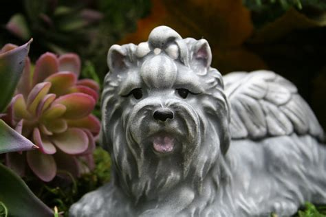 concrete yorkie statue yorkie memorial statue terrier by phenomegnome
