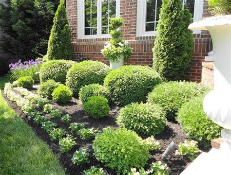 Bushes For Landscaping Flowerbeds Bushes Shrubs Landscaping Green And Shrubs