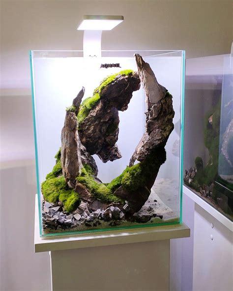 ancient stone glued scape  nano aquarium etsy
