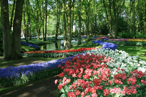 Description Of A Beautiful Garden File Keukenhof 340 Jpg Wikimedia Commons