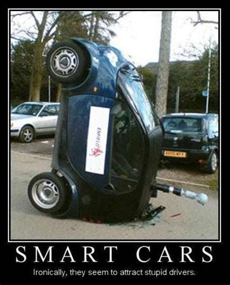 smart car deer smart car crash deer www pixshark images galleries