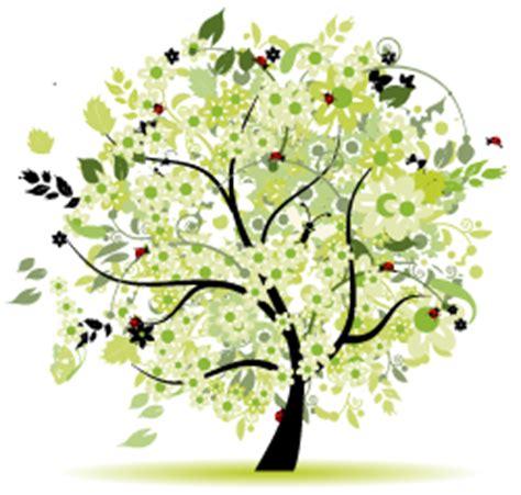 alberi colorati da giardino alberi ornamentali da giardino vivai piante gabbianelli