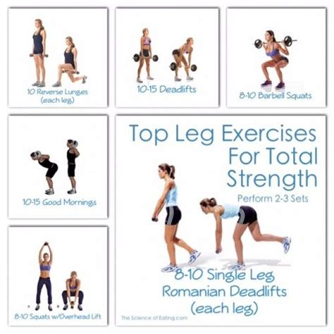 image gallery leg exercises