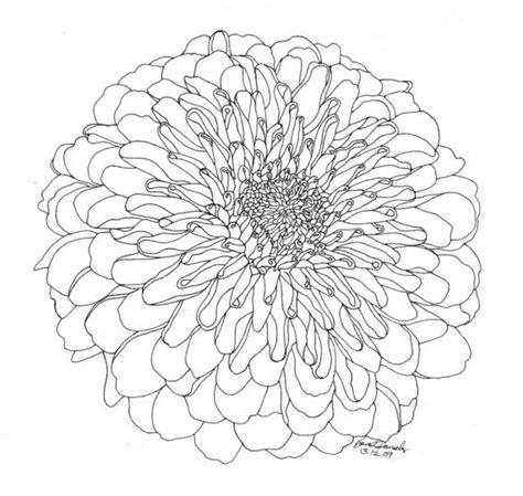small chrysanthemum tattoo best 25 chrysanthemum drawing ideas on