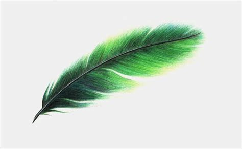 www feather feather design commission by x ellie x on deviantart