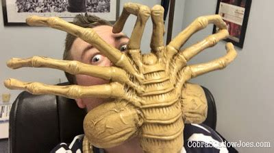 Facehugger Size S cobrashadowjoes neca toys foam prop replica size facehugger