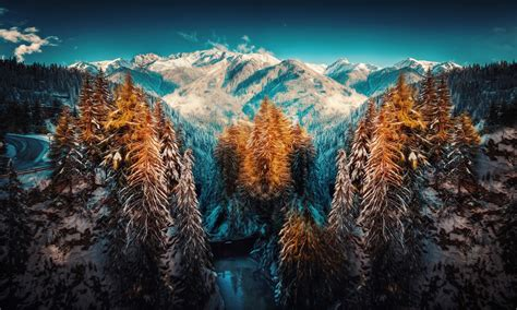 photography landscape nature mountains forest snow