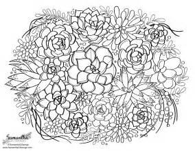 succulent coloring samantha george