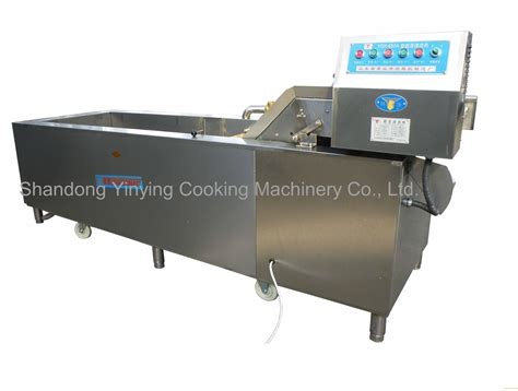 motor machine national city yqx 650 vegetable fruit washing sanitizing machine