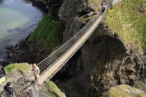 swing 4 ireland 1000 images about swing and rope bridges on pinterest