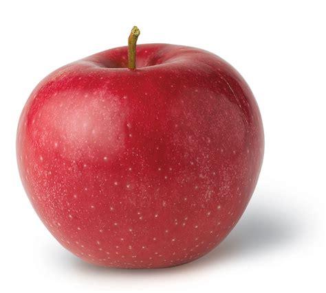 A Apple by Rome Ny Apple Association
