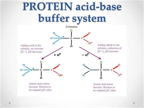 what is phosphate buffer system