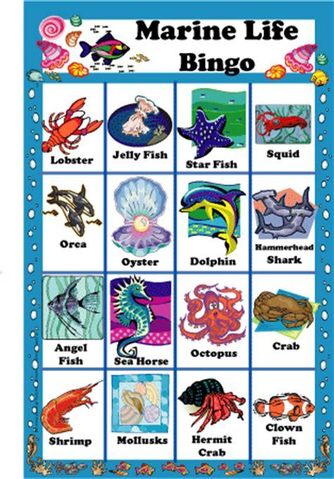 8 best images of sea animal bingo printable printable free ocean life pictures download free clip art free