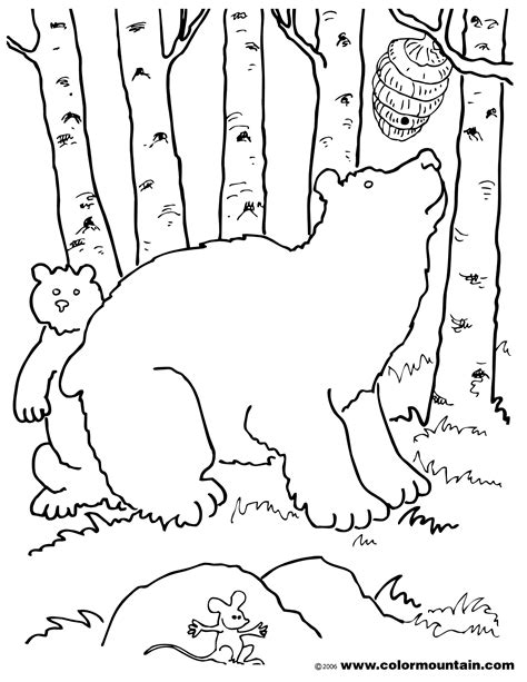 honey bear coloring pages honey bear coloring page create a printout or activity