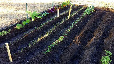 The Beginning Spring Vegetable Garden Youtube How To Do A Vegetable Garden