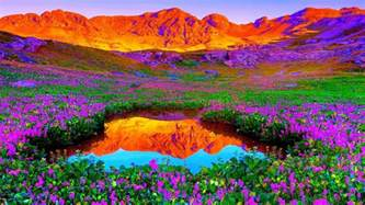 Nature Colors by Colors Of Nature Wallpaper