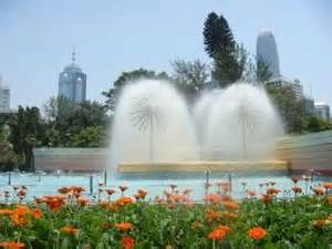 Hong Kong Zoological And Botanical Gardens How To Become A Real Estate In Hong Kong Tao Big City Small Apartment