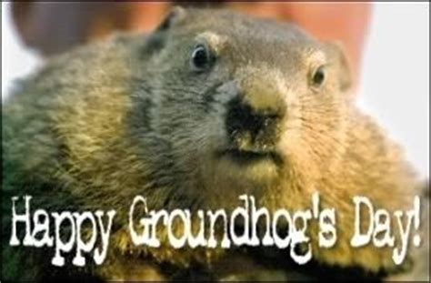 groundhog day keep the talent happy 21 best images about favorite on