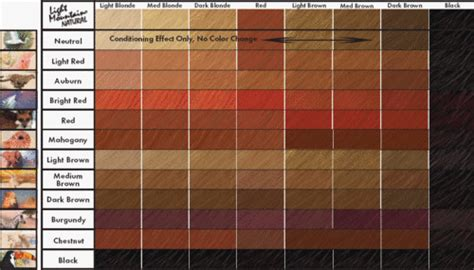 different shades of red for hair color different shades red hair color chart medium hair styles