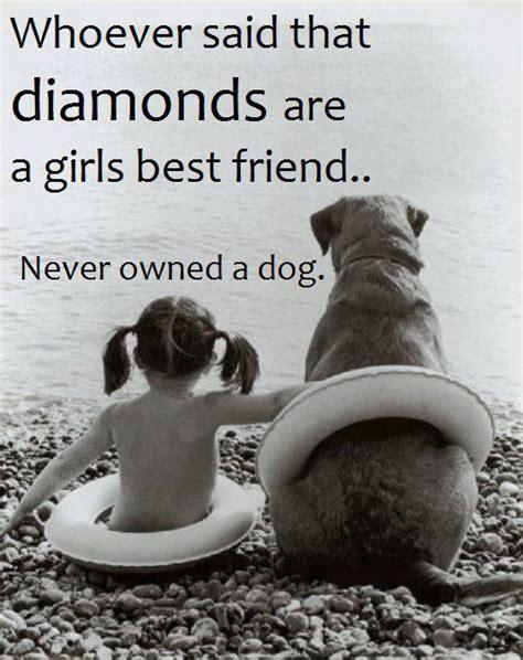 best friend pet best friend quot paws quot for a moment