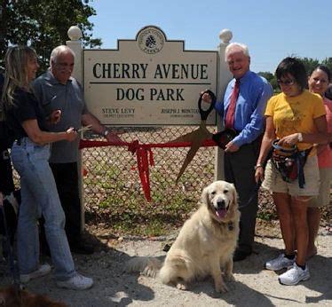 park avenue puppies 08 04 2011 cherry avenue park in w sayville now open li