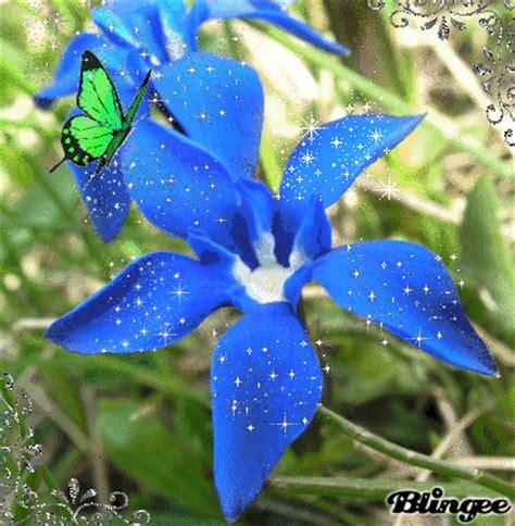 la flor ms bella del co la flor mas bella picture 109870471 blingee com