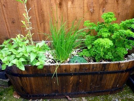 yard landscaping ideas  reuse  recycle