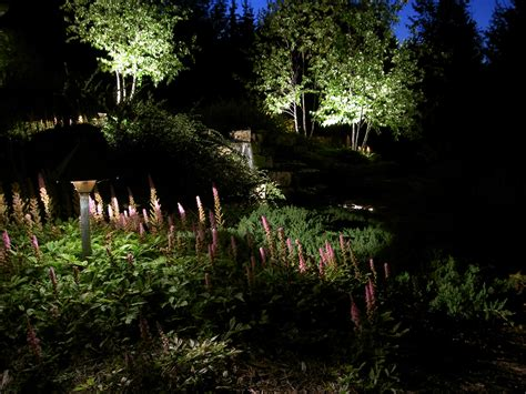 landscape lighting photos landscape lighting treetops landscape design