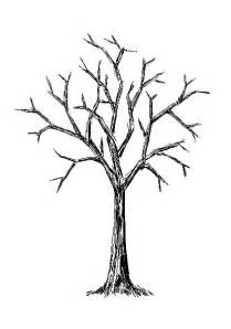 bare tree images clipart best