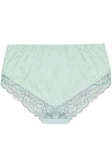 Name Card Mesh mint green blue two tone mesh brief with floral lace