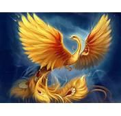 Mythical Phoenix Quotes QuotesGram