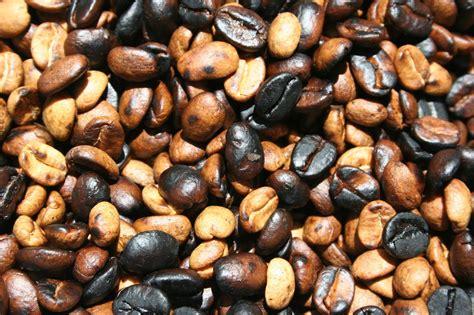 Blend Coffee Bean pragpub august 2009 get a the pragmatic bookshelf