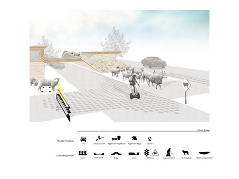 submit your designs to the animal architecture awards design competitions urban animal award winners the expanded environment
