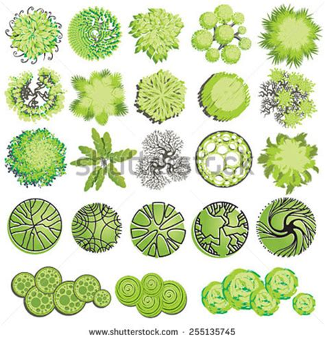 landscape design elements vector illustration trees top view landscape design stock vector 172553513