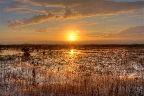 everglades sunset  stock photo public domain pictures