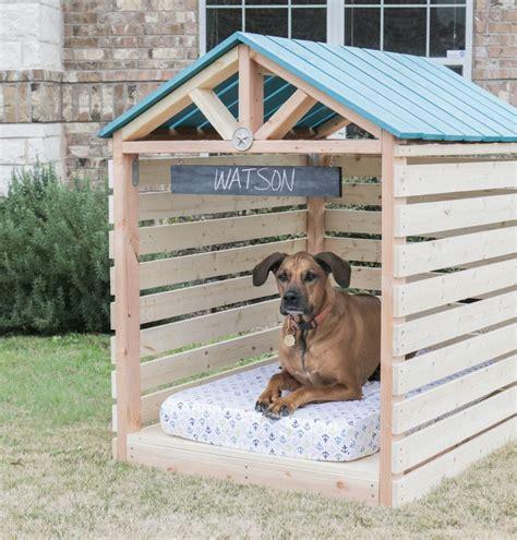 casa per cani cucce per cani da esterno come crearne una in legno