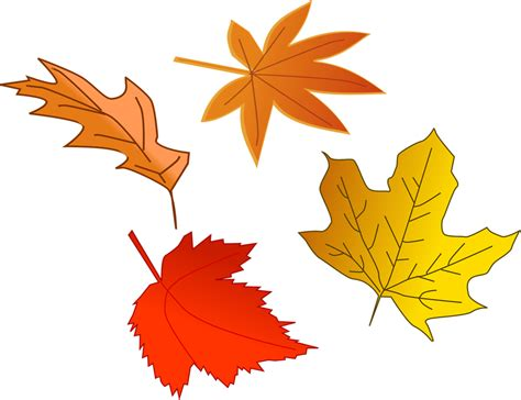 printable fall leaves clip art fall leaves clipart clipground