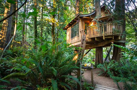 real life treehouse the treehouses of western washington seattle weekly