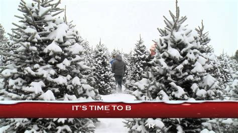 cut your own christmas tree columbus choose and cut your own tree