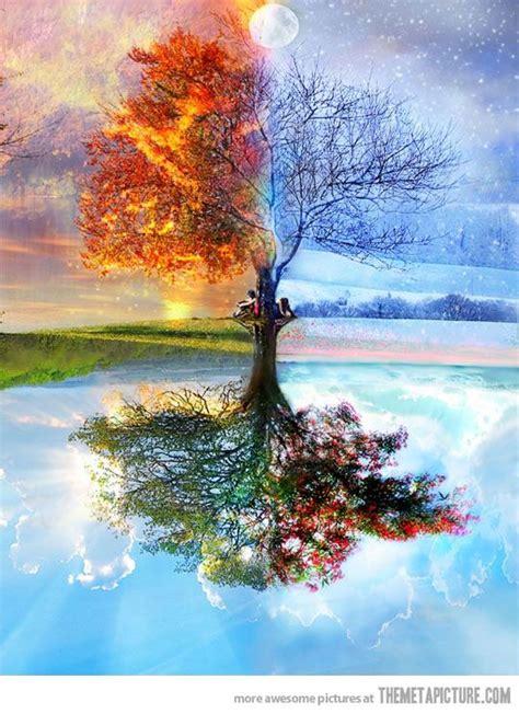 164 best 4 seasons winter best 25 four seasons ideas on four seasons